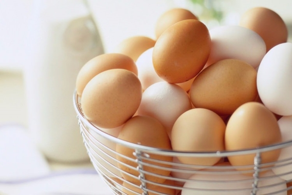 yumurta alerjisi