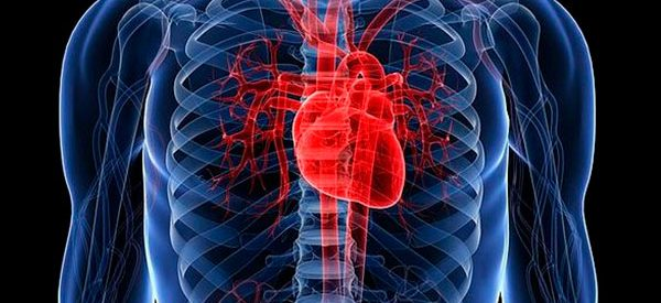 kalp ve zeka
